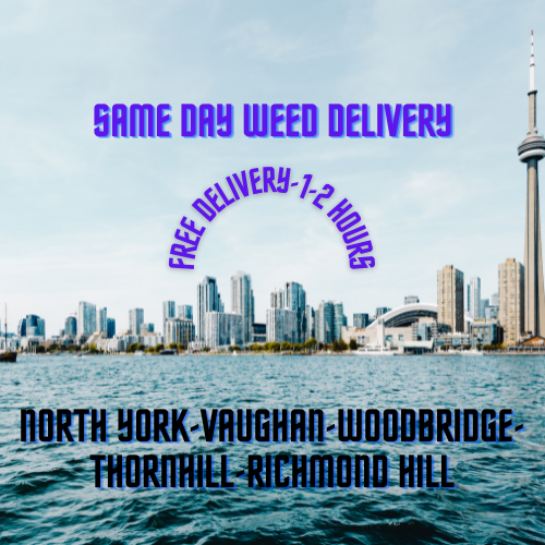 free-weed-delivery-toronto